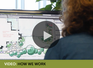 Video: How We Work